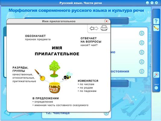 Морфология современного русского языка и культура речи (DVD-box) .